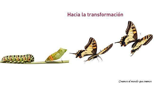 transformacion