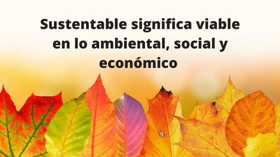 Sostenibilidad o sustentabilidad que és?