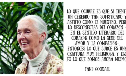Jane Goodall la Jane de Tarzán